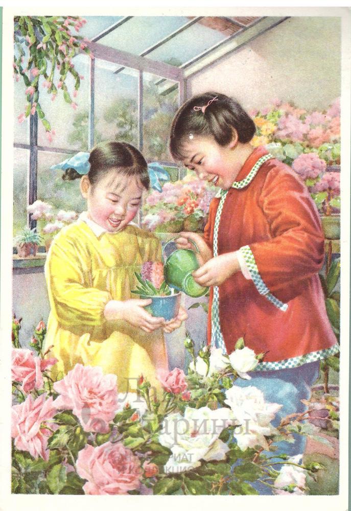 Китайские открытки 50 х годов 23