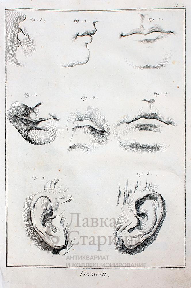 части лица человека рисунки для детей